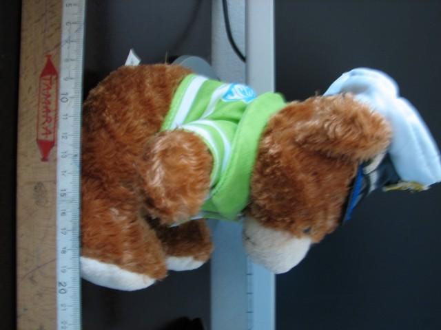 Bear - foto