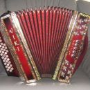 harmonika Viki