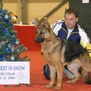 Zmagovalka razstave CAC Celje 2006
