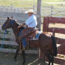 Jesse the Horseman gentling Two Socks