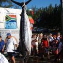 zmagovalna riba, blue marlin 208,6kg