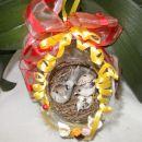 Jačka z gnezdo 10.04.2009