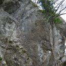 Balvani Brinjeva Gora