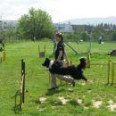 3. agility piknik KD Obala