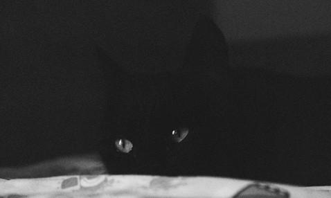 Črna Bučka v črnobelem