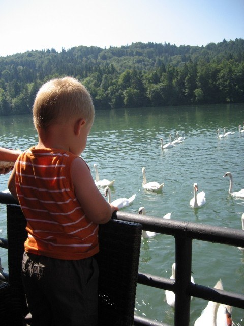 ZBILJSKO JEZERO 11.07.2008 - foto