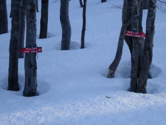 Najprej se vzpnemo preko smučišča, nato pridemo do krožne markirane poti na Snježnik. Za v