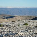 Pogled z vrha preko kamnite puščave otoka Krka do Velebita..