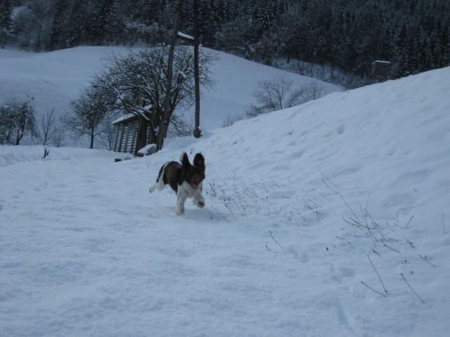 Naša uživačka na snegu :-)