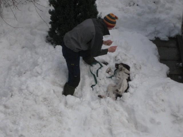 Prijeten sneg 2.2.2009 - foto