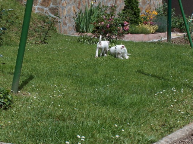 Ula&Chili - foto