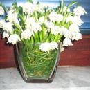 trava v vazi, na sredini pa manjša vaza z vodo