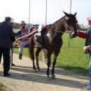 24.10.2004 Šentjernej 3.dirka_Malkom d.o.o. Zmagovalec dirke g.Bernardič Uroš ( Grace Be