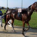 24.10.2004 Šentjernej 4.dirka_Doneko d.o.o. Zmagovalec dirke g.Hrovat Robert (Foma Om