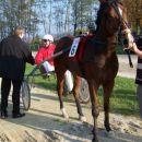 24.10.2004 Šentjernej 5.dirka_SKB Banka d.d. Zmagovalec dirke g.Bučar Silvo (Pinot