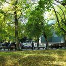 ICAWC 2011 Riga