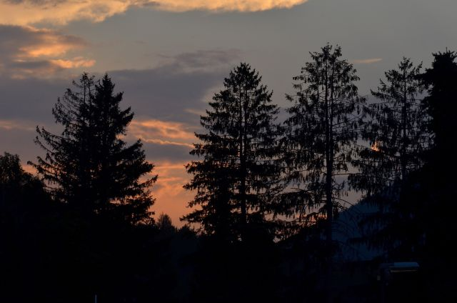 Zelenci, Tamar, proti Jalovcu, 18, 19.7.2015 - foto