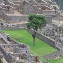 Pogled na neodkrito mesto Machu Picchu, kjer je živelo cca 10000 prebivalcev, ki so verjet