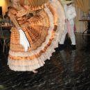 Plesalka v hotelu pri večerji