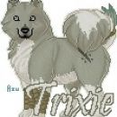 Trixi's fursona as a samoyed