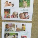 Zbiranje hrane in opreme za živali na OŠ Lendava