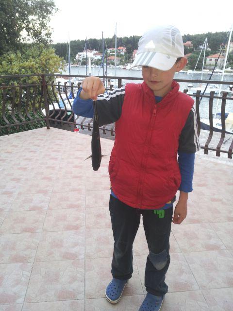 Tom in velika riba - bu