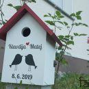 darila - ptičnica lovebirds