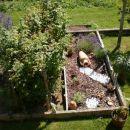 Želiščni vrt