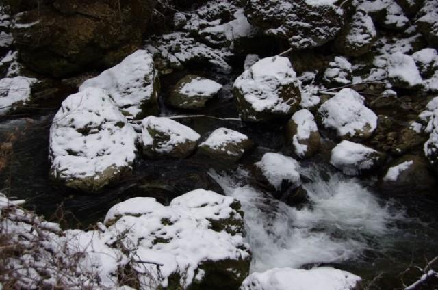 9. januar - ob Gračnici - foto