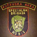 Našitki Slovenska vojska od 1991-