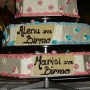 Torta za naša dva birmanca (kupljena)
