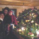 Ogled Žličarjevih jaslic. 22. 12. 2007