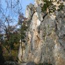 stena nad jezerom na JZ pobočju Črnega hriba...okolje in tudi rastlinstvo sta izrazito kra