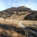 Sladke rovne; na njih pripelje gozdna cesta, v ozadju je viden Streliški vrh s