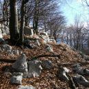 brezpotna pobočja Srednje gore nad omenjeno stezico, ki se začenja pri bunkerju in jih pre
