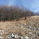 vzpon z sedla pod Streliškim vrhom proti Pleši - zahodnemu, nižjemu vrhu slednjega...S ple