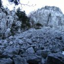 Žgonov škol - pod razbito steno je grobo melišče z velikimi skalami, okolje spominja na vi