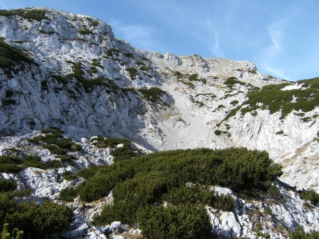 Krnica pod vzhodnim pobočjem Velikega vrha je prav poseben kraj; tukaj je doma prava gorsk