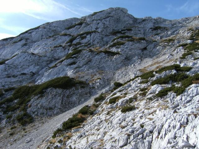 Vzhodno pobočje Velike zelenice, v ozadju Veliki vrh ( 2111 m ). Na Veliko zelenico sem se