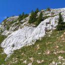 V skalah ob poti je voda izdolbla številne škraplje ...