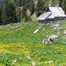 pastiraski stan na planini Viševnik pod vrhom Pršivca