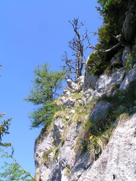 Tudi tukaj čez sva plezala ( vršnemu ostenju se je moč izogniti po desni strani, čeprav je