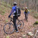 V redkem kraškem gozdu je bilo dovolj stezic, ki so omogočale prijetne kolesarske prehode