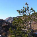 Na Mali gori, kamor sem se povzpel po zadnjem delu markirane poti iz Stomaža, na katero se