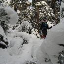 Hrib je bil lepo zasnežen, na vejah pa so bile še vedno debele snežene obloge...