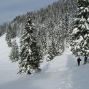 z vrha Dobrče sva se spustila do koče kar po zasneženem pobočju med smrekami...snega ni bi