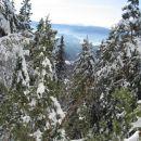gozdnata pobočja Dobrče, ki se dvigujejo nad gorenjsko ravnino pokrivajo mešani gozdovi, k