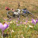 kolesarska pomlad