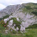 pogled na Desko ( 1970 m nm ) s pobočij sosednjega Ovčjega vrha ( 1980 m nm ), na levi str