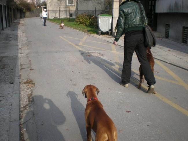 Polo in Gina -apr09,z Barom nov08 - foto povečava